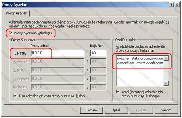 IE Proxy Ayarları