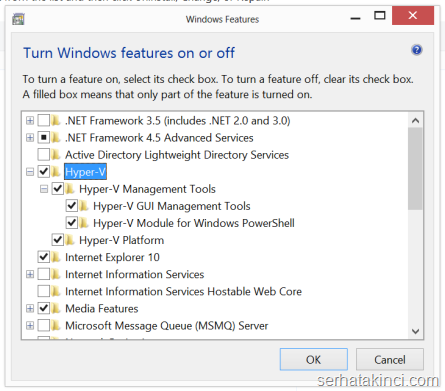 Hyper-V feature